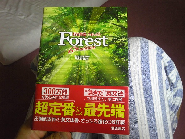 forest_6th_edition_02.jpg