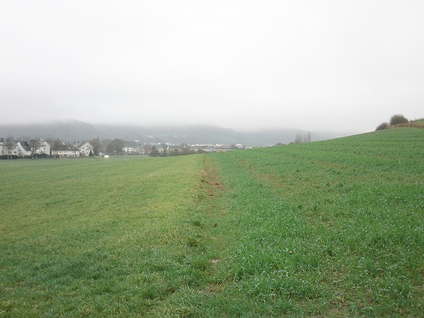 luxembourg_countryside20.jpg