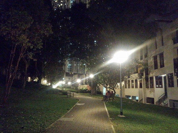 now_i_am_in_singapore_06.jpg