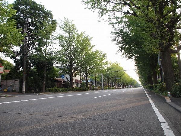 photo_hachioji_route_20_04.jpg